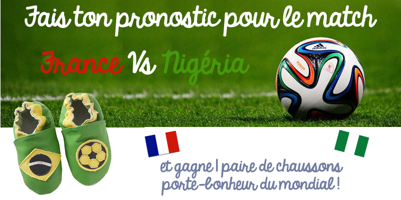 Crea france nigériablog2 copie